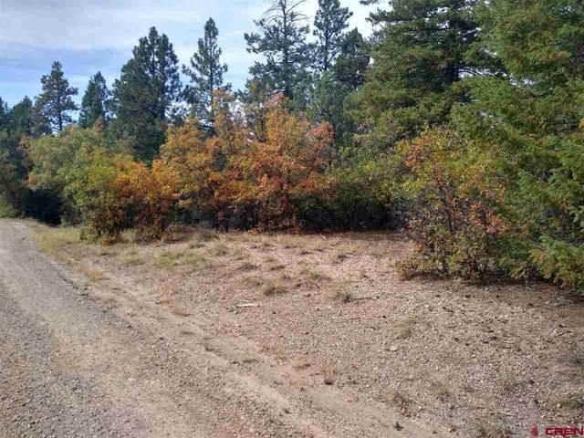 537 Blanca Place, Pagosa Springs, CO 81147 (MLS #774963) :: The Dawn Howe Group | Keller Williams Colorado West Realty