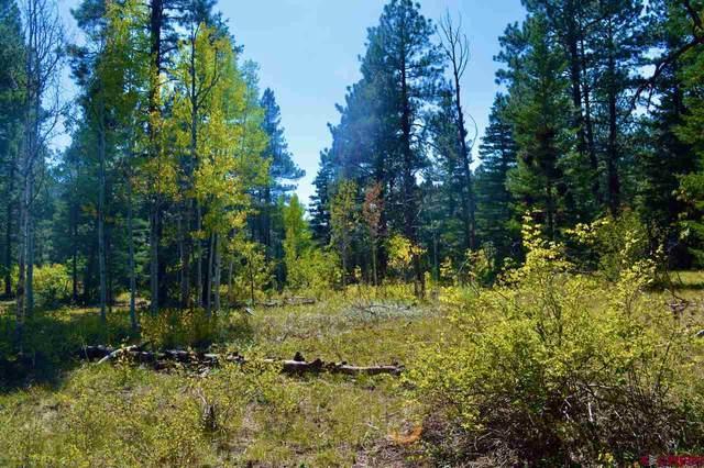 TBD Los Ranchitos Drive, Durango, CO 81301 (MLS #774974) :: Durango Mountain Realty