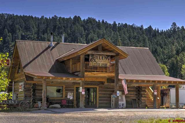 13980 County Road 240, Durango, CO 81301 (MLS #775089) :: Durango Mountain Realty
