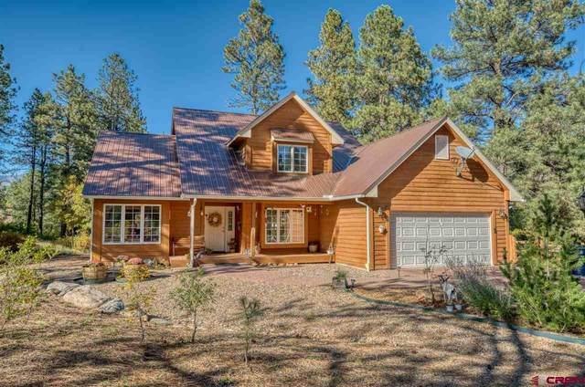 270 N Lakeside Drive, Durango, CO 81303 (MLS #775099) :: Durango Mountain Realty