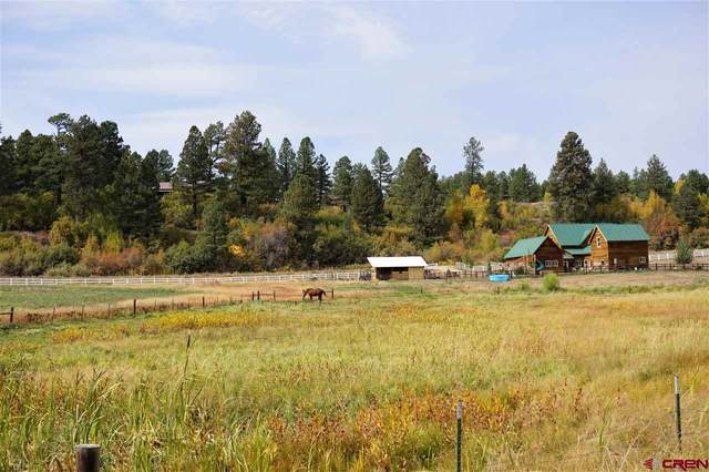 3064 County Road 526, Bayfield, CO 81122 (MLS #775147) :: The Dawn Howe Group | Keller Williams Colorado West Realty