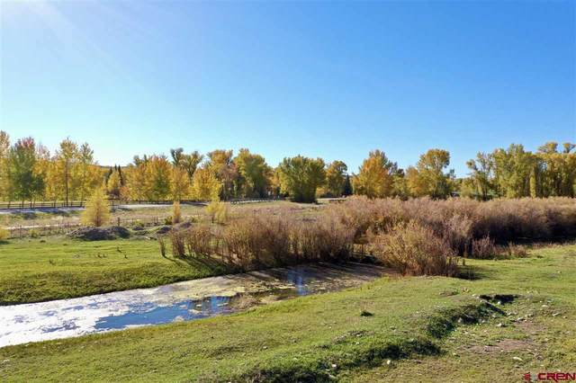 76 Chinook Trail, Gunnison, CO 81230 (MLS #775167) :: The Dawn Howe Group | Keller Williams Colorado West Realty