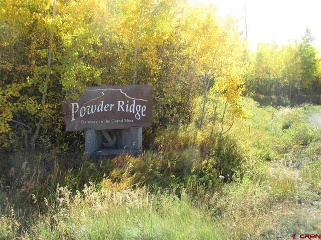 12 Powder Ridge Circle, Mesa, CO 81643 (MLS #775226) :: The Dawn Howe Group | Keller Williams Colorado West Realty