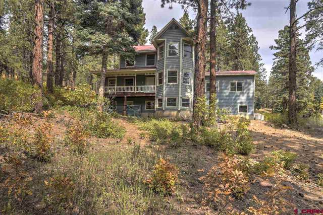 959 Sierra Drive, Durango, CO 81301 (MLS #775284) :: Durango Mountain Realty