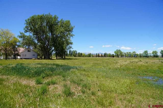 11487 Highway 550, Durango, CO 81303 (MLS #775317) :: Durango Mountain Realty