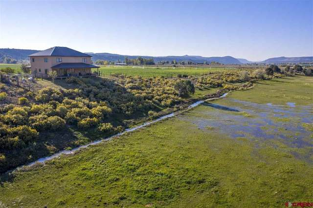 519 County Road 216, Durango, CO 81301 (MLS #775319) :: Durango Mountain Realty