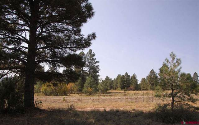 1346 Trails Boulevard, Pagosa Springs, CO 81147 (MLS #775330) :: The Dawn Howe Group | Keller Williams Colorado West Realty