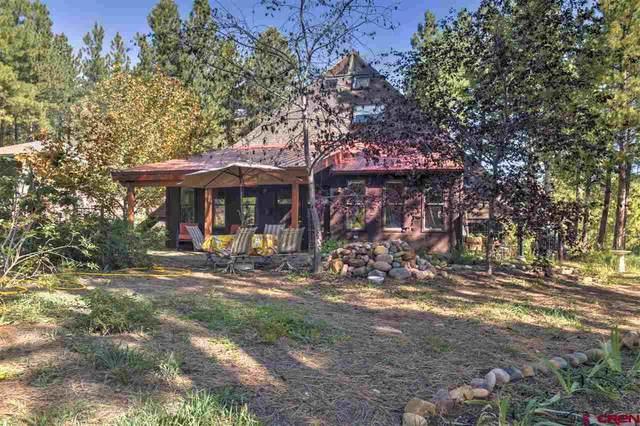 582 Golden Dipper, Durango, CO 81301 (MLS #775352) :: Durango Mountain Realty