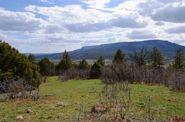 X N Cougar, Pagosa Springs, CO 81147 (MLS #775397) :: The Dawn Howe Group | Keller Williams Colorado West Realty