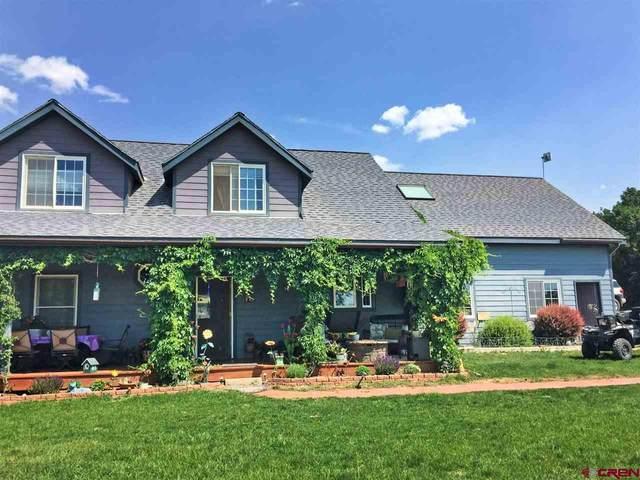 1088 Ranchos Florida Drive, Durango, CO 81303 (MLS #775423) :: Durango Mountain Realty