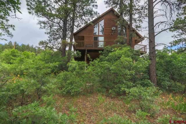 204 Swiss Village Drive, Pagosa Springs, CO 81147 (MLS #775427) :: The Dawn Howe Group | Keller Williams Colorado West Realty