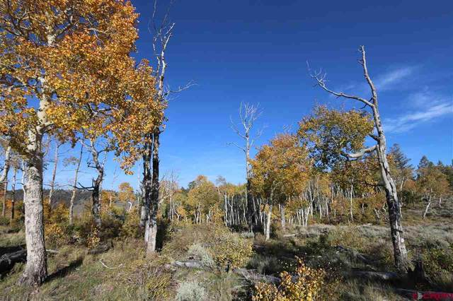 S. Bever Creek E 3057 Road, Gunnison, CO 81149 (MLS #775451) :: The Dawn Howe Group | Keller Williams Colorado West Realty