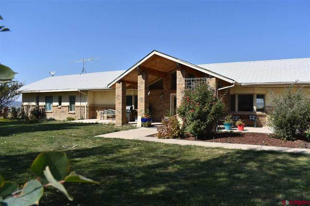 5215 Hwy 160-491, Cortez, CO 81321 (MLS #775462) :: The Dawn Howe Group | Keller Williams Colorado West Realty
