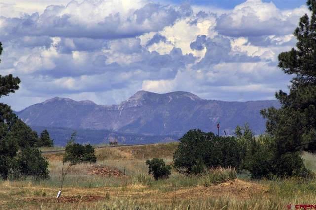 810 Lakeside Drive, Pagosa Springs, CO 81147 (MLS #775472) :: The Dawn Howe Group   Keller Williams Colorado West Realty