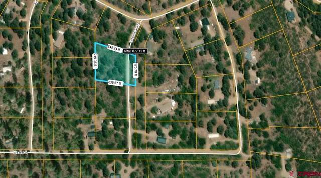 59 Cottonwood Drive, Pagosa Springs, CO 81147 (MLS #775544) :: The Dawn Howe Group | Keller Williams Colorado West Realty