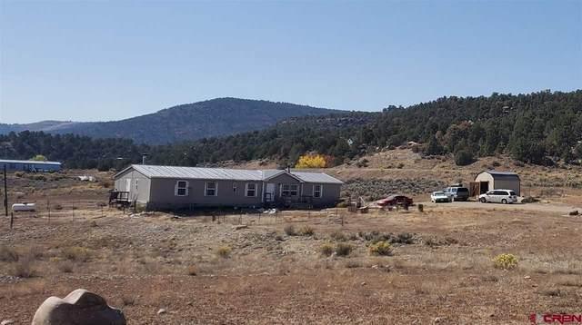 41 Road 4046, Navajo Dam, NM 87419 (MLS #775595) :: The Dawn Howe Group   Keller Williams Colorado West Realty