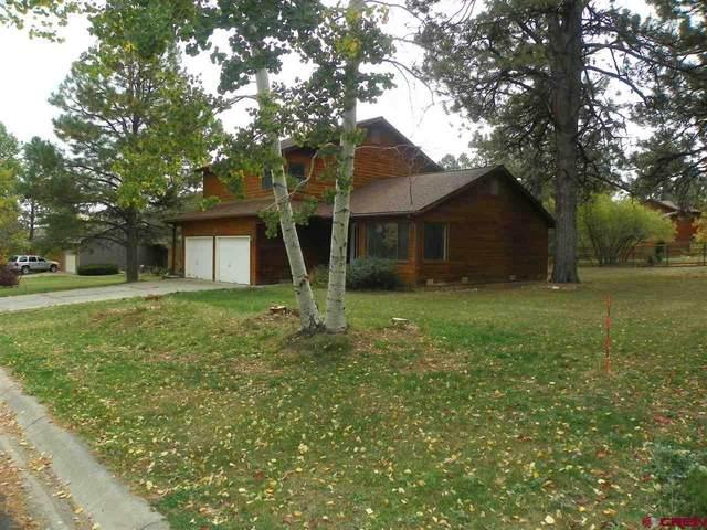 1185 Oak Drive, Durango, CO 81301 (MLS #775619) :: Durango Mountain Realty