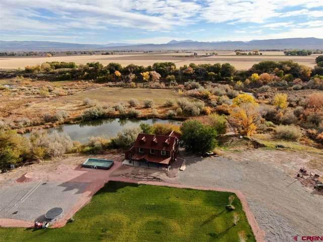 2530 5500 Road, Delta, CO 81416 (MLS #775647) :: The Dawn Howe Group   Keller Williams Colorado West Realty