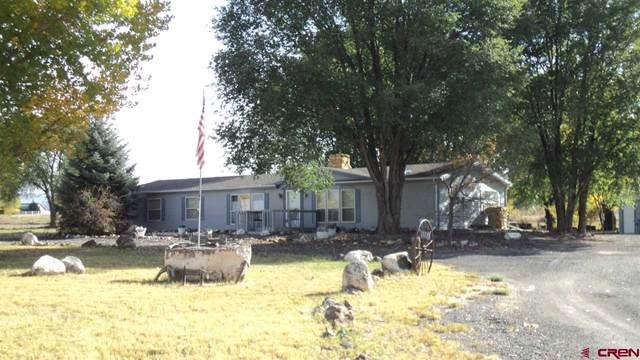 12142 2135 Road, Austin, CO 81410 (MLS #775697) :: The Dawn Howe Group   Keller Williams Colorado West Realty