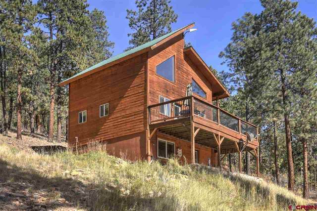 133 Mark Trail, Durango, CO 81301 (MLS #775701) :: Durango Mountain Realty