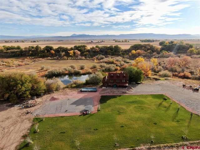 2530 5500 Road, Delta, CO 81416 (MLS #775728) :: The Dawn Howe Group   Keller Williams Colorado West Realty