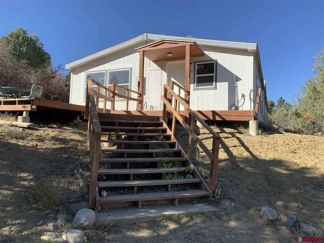 281 Alpine Drive, Durango, CO 81301 (MLS #775806) :: The Dawn Howe Group | Keller Williams Colorado West Realty