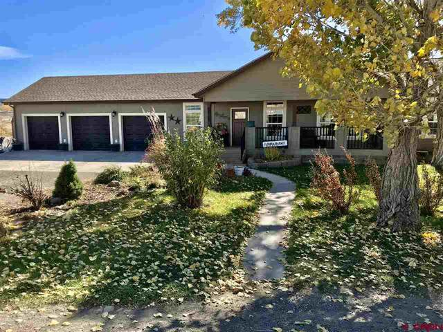 68764 Racine Road, Montrose, CO 81401 (MLS #775821) :: The Dawn Howe Group | Keller Williams Colorado West Realty