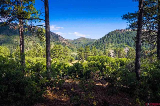 367 Edgemont Meadows Road, Durango, CO 81301 (MLS #775827) :: Durango Mountain Realty