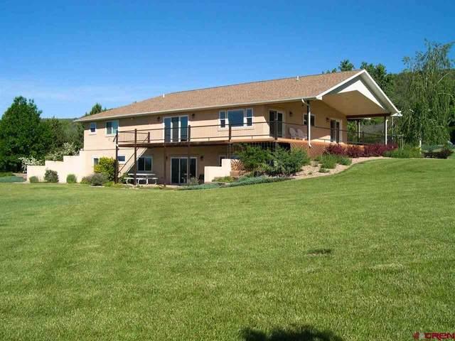 39664 Panorama Road, Paonia, CO 81428 (MLS #775851) :: The Dawn Howe Group | Keller Williams Colorado West Realty