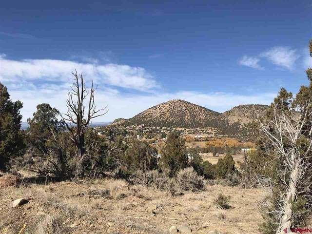 Lot 2 D Road, Crawford, CO 81415 (MLS #775854) :: The Dawn Howe Group | Keller Williams Colorado West Realty