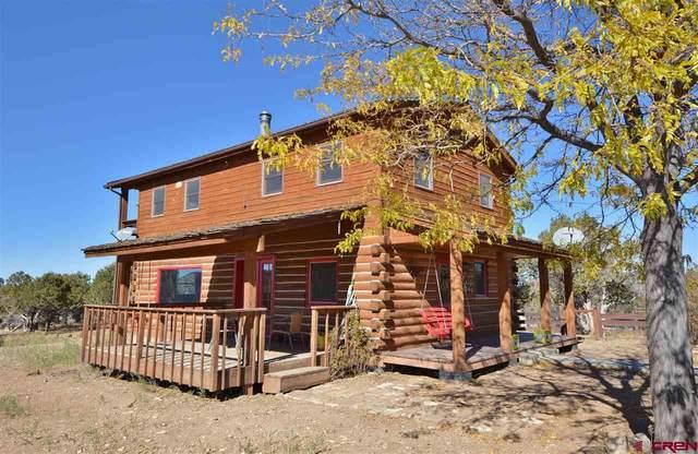 34091 B25 Road, Crawford, CO 81415 (MLS #775857) :: The Dawn Howe Group | Keller Williams Colorado West Realty