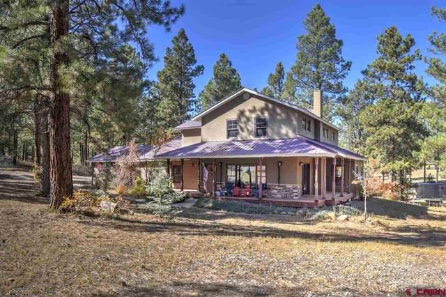 457 Shenandoah Road, Durango, CO 81301 (MLS #775879) :: Durango Mountain Realty