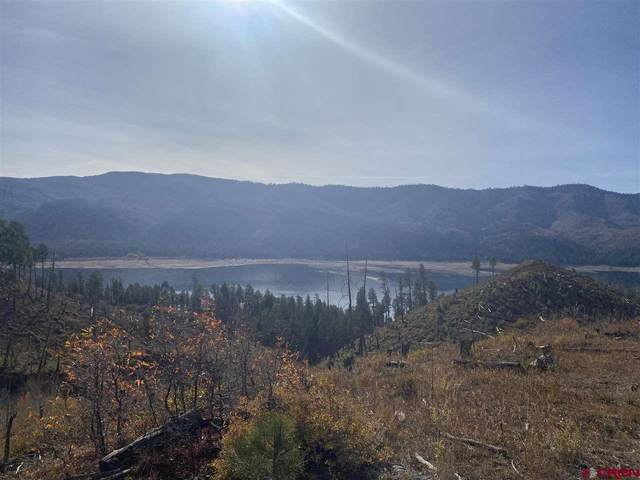 TBD Lake View Drive, Vallecito Lake/Bayfield, CO 81122 (MLS #775886) :: The Dawn Howe Group | Keller Williams Colorado West Realty