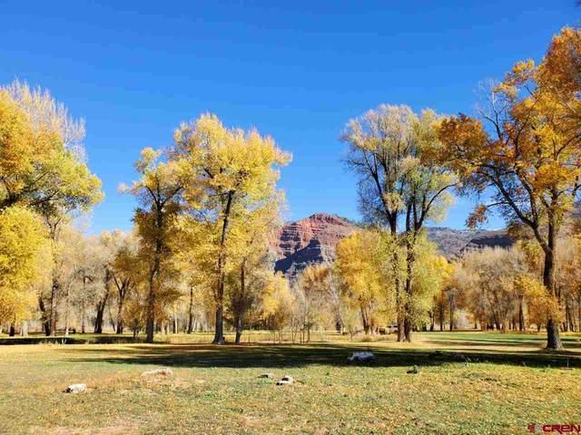 607 Hermosa Meadows Road, Durango, CO 81301 (MLS #775890) :: Durango Mountain Realty