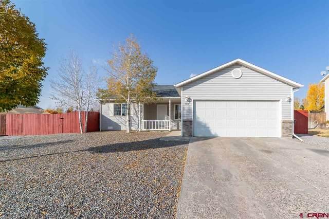 1513 Haystack Road, Montrose, CO 81401 (MLS #775898) :: The Dawn Howe Group | Keller Williams Colorado West Realty