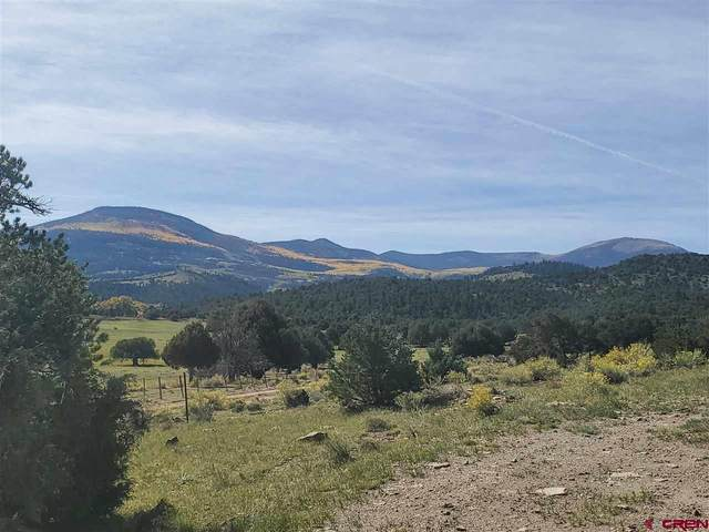 TBD Pinon, South Fork, CO 81154 (MLS #775905) :: The Dawn Howe Group   Keller Williams Colorado West Realty