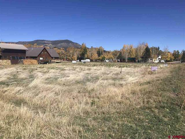 49 Rio Vista Circle, South Fork, CO 81154 (MLS #775925) :: The Dawn Howe Group   Keller Williams Colorado West Realty