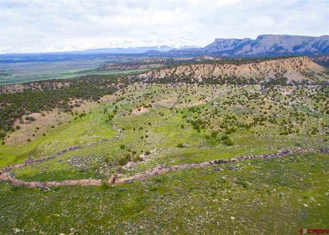 tbd H Road, Cortez, CO 81321 (MLS #775940) :: The Dawn Howe Group | Keller Williams Colorado West Realty
