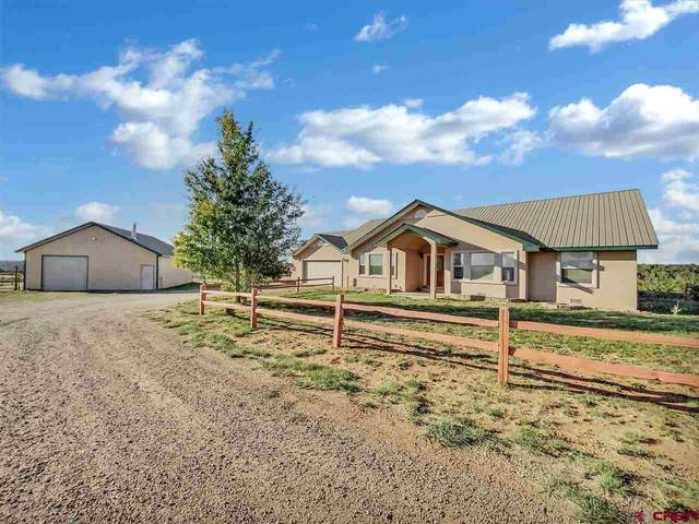 15811 Rd Z, Yellow Jacket, CO 81335 (MLS #775961) :: The Dawn Howe Group | Keller Williams Colorado West Realty