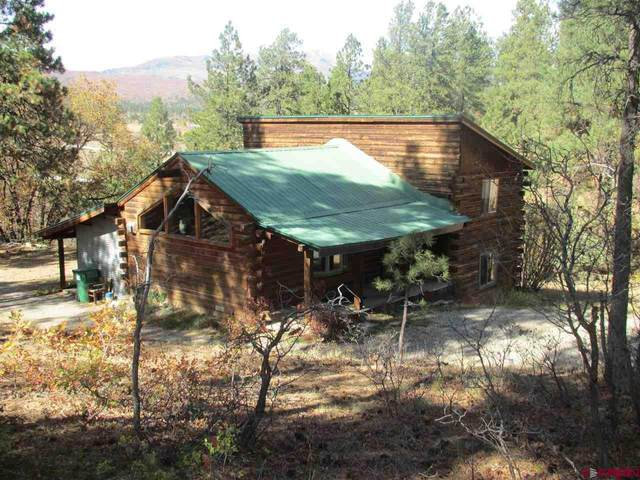378 Browns Lake Road, Durango, CO 81301 (MLS #775970) :: Durango Mountain Realty