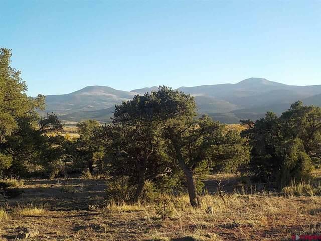 138 W Pfieffer Loop, South Fork, CO 81154 (MLS #775975) :: The Dawn Howe Group | Keller Williams Colorado West Realty