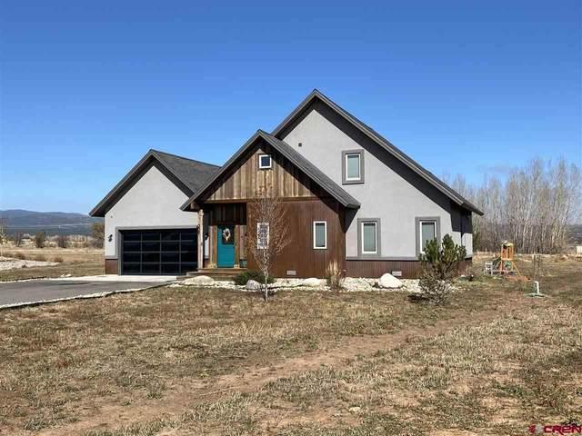 209 Encantado Lane, Durango, CO 81303 (MLS #775991) :: The Dawn Howe Group   Keller Williams Colorado West Realty