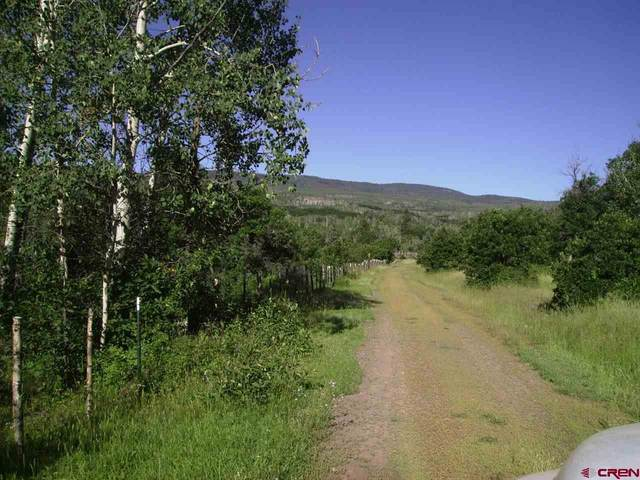 TBD Hubbard Creek Road, Paonia, CO 81428 (MLS #776007) :: The Dawn Howe Group | Keller Williams Colorado West Realty