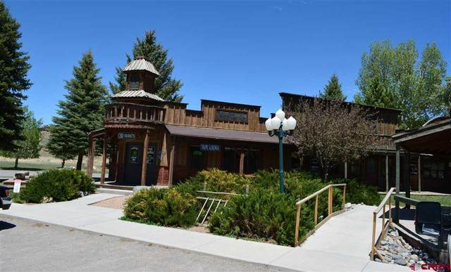 150 Palamino Trail, Ridgway, CO 81432 (MLS #776008) :: The Dawn Howe Group | Keller Williams Colorado West Realty