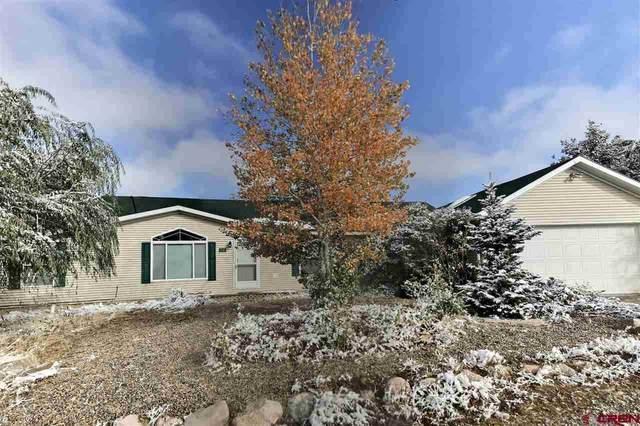 1530 Homestead Drive, Bayfield, CO 81122 (MLS #776013) :: The Dawn Howe Group | Keller Williams Colorado West Realty