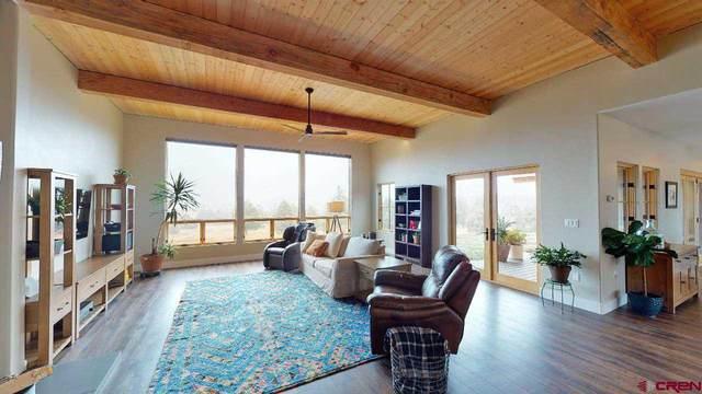 1074 D & Rg Drive, Durango, CO 81303 (MLS #776029) :: The Dawn Howe Group   Keller Williams Colorado West Realty