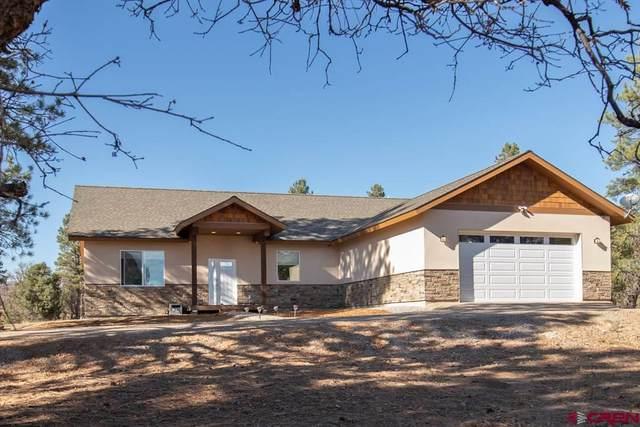 66 Mountain View Circle, Durango, CO 81303 (MLS #776049) :: Durango Mountain Realty
