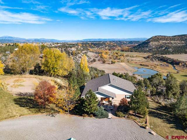 248 County Road 217, Durango, CO 81303 (MLS #776067) :: The Dawn Howe Group | Keller Williams Colorado West Realty