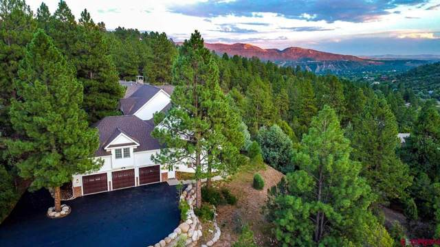 10 Perins Vista, Durango, CO 81301 (MLS #776137) :: Durango Mountain Realty