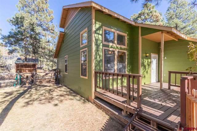 56 Choke Cherry Circle, Durango, CO 81303 (MLS #776205) :: The Dawn Howe Group | Keller Williams Colorado West Realty